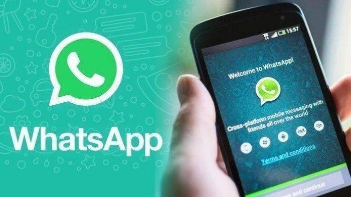 Cara Menghemat Kuota Data saat Pakai Aplikasi WhatsApp, Ikuti Tutorialnya