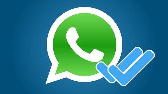 Cara Gampang Hilangkan Centang Biru dan Last Seen di Aplikasi WhatsApp, Tak Bakal Ketahuan