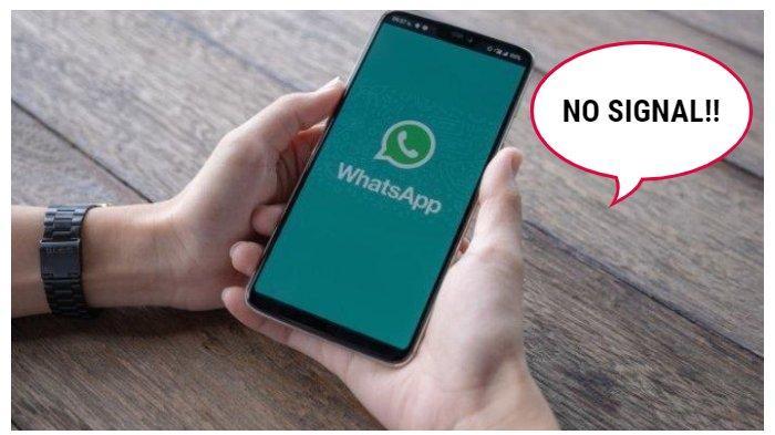 Cara Gampang Pakai WhatsApp Meski Tak Ada Jaringan Internet, Selamat Mencoba!