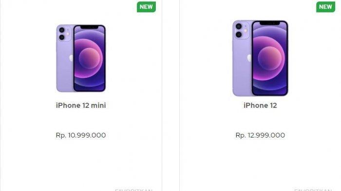 Harga iPhone Terbaru Juli 2021, iPhone 12 dan iPhone 12 Mini Warna Ungu Mulai Rp 10 Jutaan di iBox