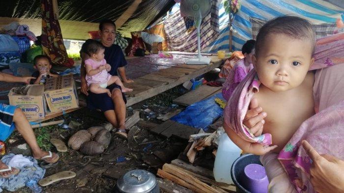 Relawan Asal Bulukumba di Majene: Pengungsi Gempa Sulbar Butuh Minyak Kayu Putih