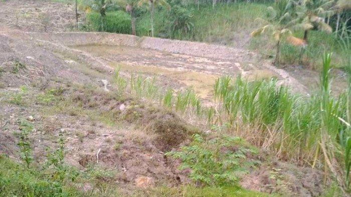 Rusak Jalan, Pengairan dan Sawah, Warga Minta Aktivitas Tambang Batu Bara di Lamuru Dihentikan