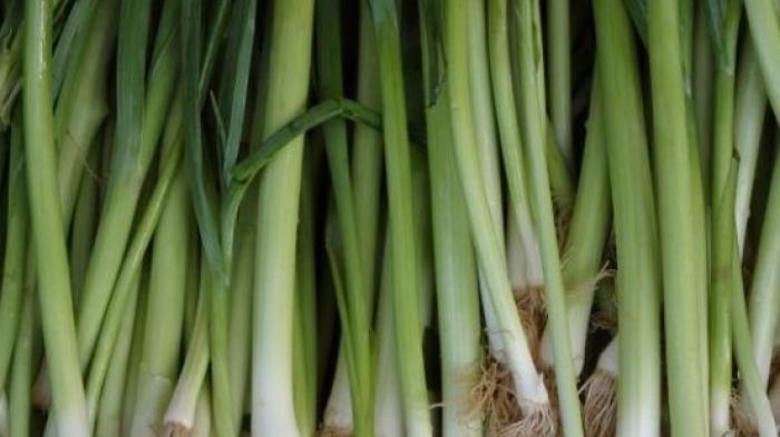 Manfaat Lain Daun Bawang Selain Sebagai Bumbu Dapur