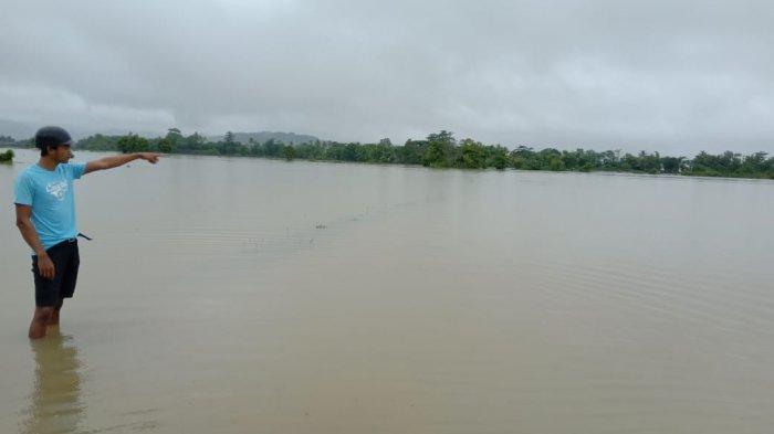 Pemukiman dan Ratusan Hektare Sawah di Manarang Bantimurung Terendam Banjir, Petani Terancam Rugi