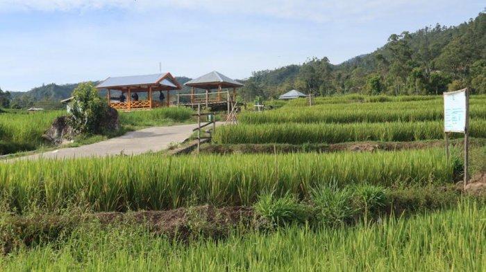 Kampung Galung Desa Barania Sinjai Lolos 100 Besar Desa Wisata Indonesia