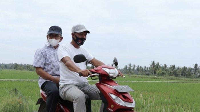 Disnaker Sulbar Serap 3.500 Tenaga Kerja Padat Karya Infrastruktur