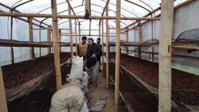 Dompet Dhuafa Bangun Gudang Kopi untuk Petani Pelosok Pinrang