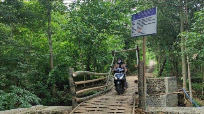 VIRAL Jembatan Bambu Uangnya Pakai APBD Rp 200 Juta, Berikut Fakta-faktanya di Lapangan