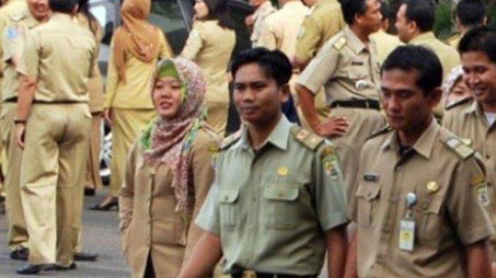 Kabar Tak Baik untuk Tenaga Honorer se-Indonesia, Peluang Jadi PNS Kian Menipis, Baca Aturannya