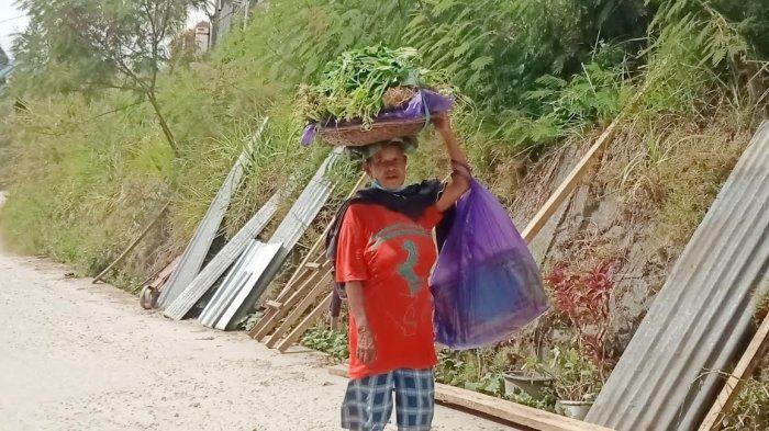 MarianaKartini Tangguh Asal Mamasa, Keliling Kota Jualan Sayur Demi Hidupi Keluarga