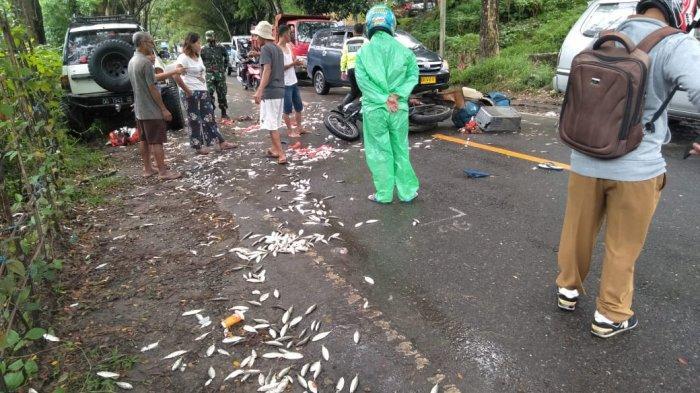 Tabrakan di Jalan Raya Buntu Buaya Toraja Utara, Penjual Ikan Dilarikan ke Puskesmas