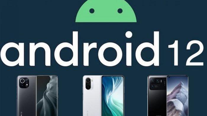 Pertama Kalinya HP Xiaomi Bakal Kebagian Update Android 12, Ini 4 Jenis Smartphone yang Bakal Pakai