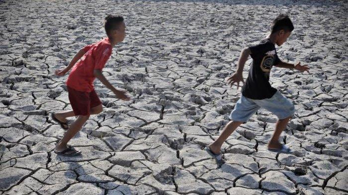 Kementan Gerak Cepat Antisipasi Wilayah Banjir di Saat Musim Kemarau