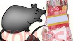 Pengakuan Tersangka Korupsi, Dana BOK Dipakai Acara HUT Bulukumba dan Layani Tamu Pemda