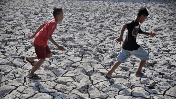 Maros Masuk Puncak Musim Kemarau, BMKG Minta Masyarakat Daerah Persawahan Waspada