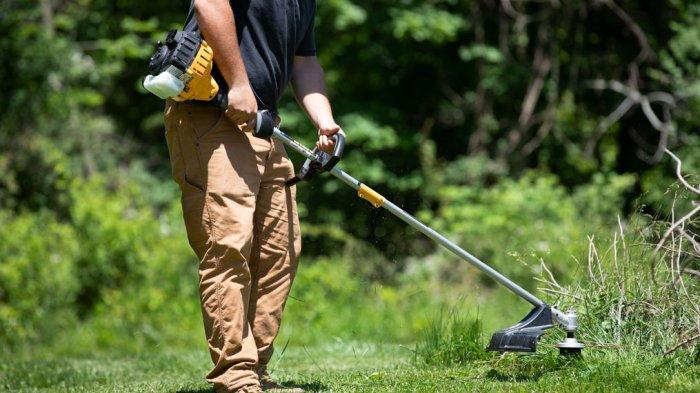Gegara Pisau Pemotong Rumput Patah dan Membuat Perawat RS Tewas, Kakek Miskin Ditahan, Gini Nasibnya