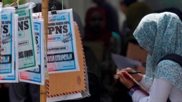 Link sscn.bkn.go.id, Jadwal Pendaftaran CPNS dan PPK P3K 2019, Formasi dan Sarjana Paling Beruntung