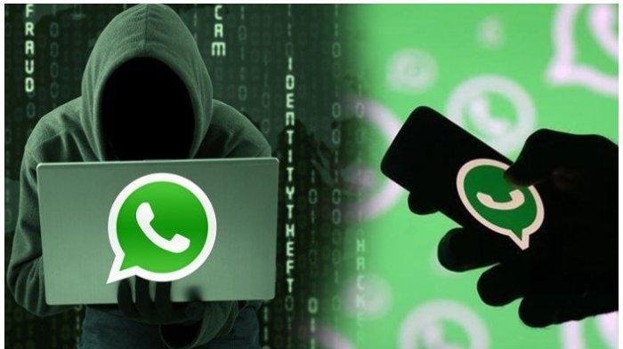 Cara Laporkan Akun WhatsApp yang Diretas, Langkah Pengamana Akun