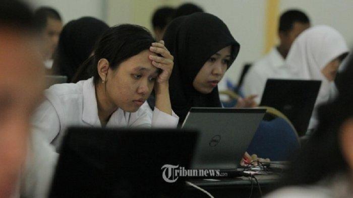 Info CPNS 2021 Pemkab Pinrang Usulkan 1037 Formasi, Terbanyak Guru PPPK