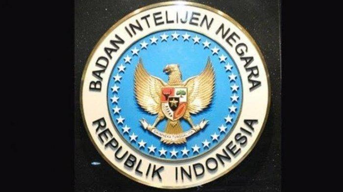 Peryataan Resmi BIN: Ada Satelit Mata-mata Asing yang Pantau Indonesia