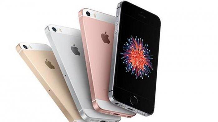 Dikabarkan akan Dirilis 2020, Spesifikasi iPhone SE 2 Disebut-sebut Setara iPhone 11, Harganya?
