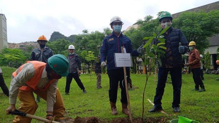 Pelestarian Lingkungan, PT Semen Tonasa Tanam Ribuan Bibit Pohon