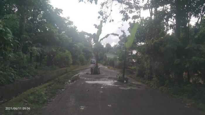 Jalan Rusak di Desa Bonto-Bontoa Bantaeng Ditanami Pohon Pisang
