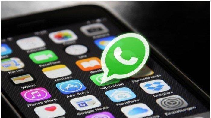 Tips Gampang Simpan dan Download Status WhatsApp Teman Selain Screenshot