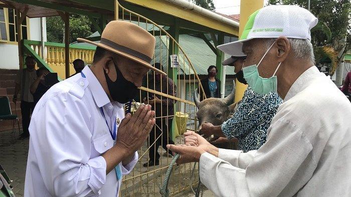 Pemkab Toraja Utara Serahkan 6 Ekor Hewan Kurban