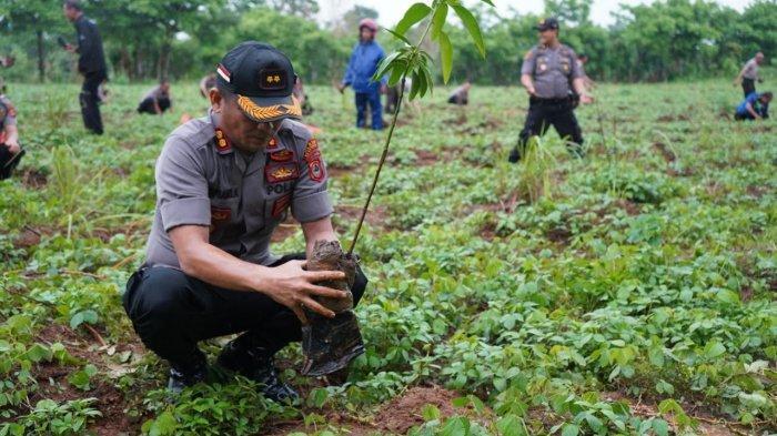 Hujan, Kapolres Gowa Pimpin Penanaman 2.500 Pohon di Bajeng