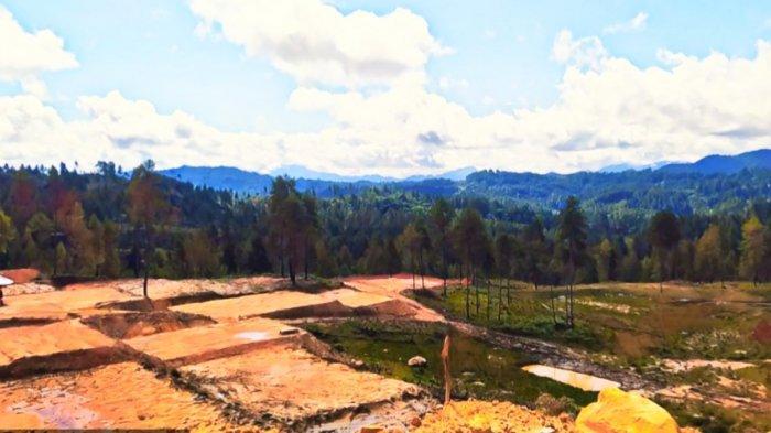 Laksanakan Perintah Jokowi, Bupati Tana Toraja Akan Tanam 1 Juta Pohon di Bukit Mapongka