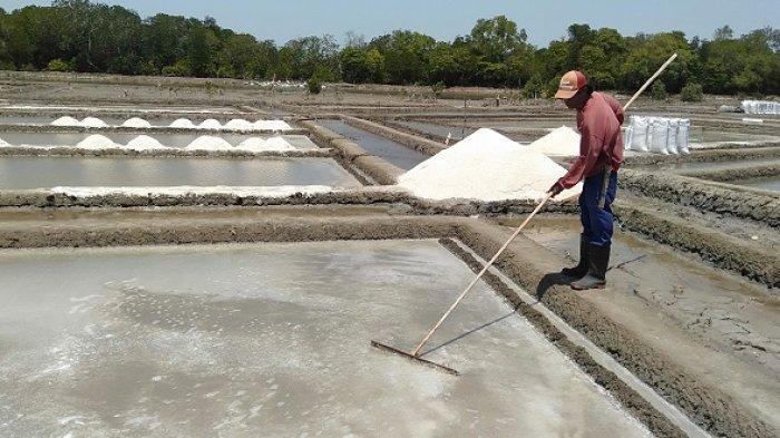 Petani garam di Kecamatan Bangkala, Jeneponto, Sulsel