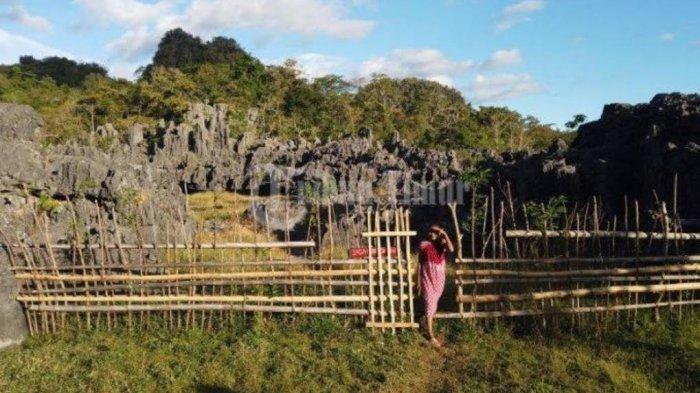 Tips Berwisata ke Hutan Batu Desa Balleangin, Jangan Sampai Lakukan 3 Hal Terlarang ini