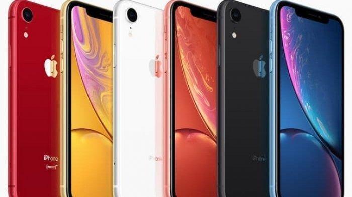 Harga iPhone Terbaru Juni 2021 di iPhone 12 Series, iPhone 11, XR hingga iPhone SE 2020