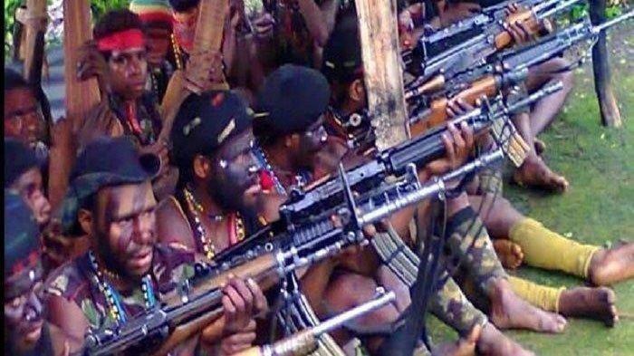 KKB Papua Mewek Mengemis ke Jokowi Hentikan Operasi Militer, Tawarkan Opsi Penyelasaian Masalah