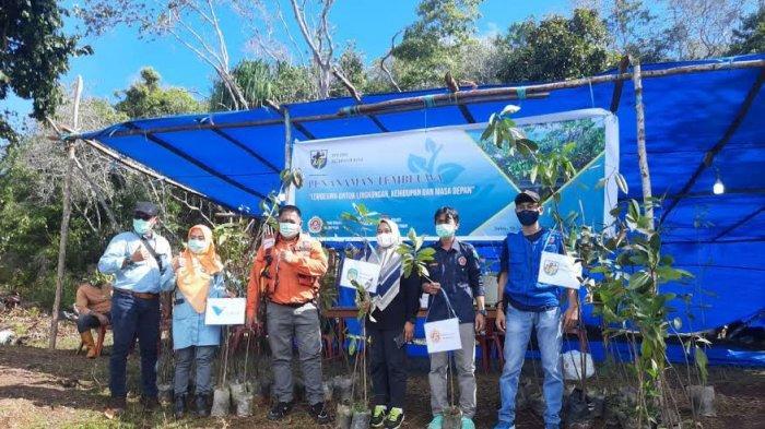 Kerjasama PT Vale, KNPI Nuha Tanam Mangrove di Tembeua Danau Matano Luwu Timur