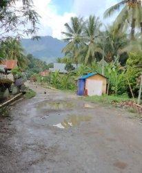Kondisi Jalan Poros Desa Tallambalao Majene Kian Memprihatinkan, Kala Hujan Mirip Kubangan Kerbau