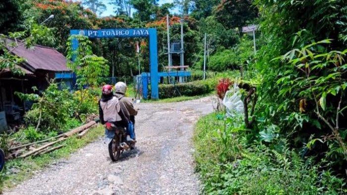 Ombas Dilantik Jadi Bupati Toraja Utara, Warga Bokin Pitung Penanian Minta Perbaikan Jalan Rusak
