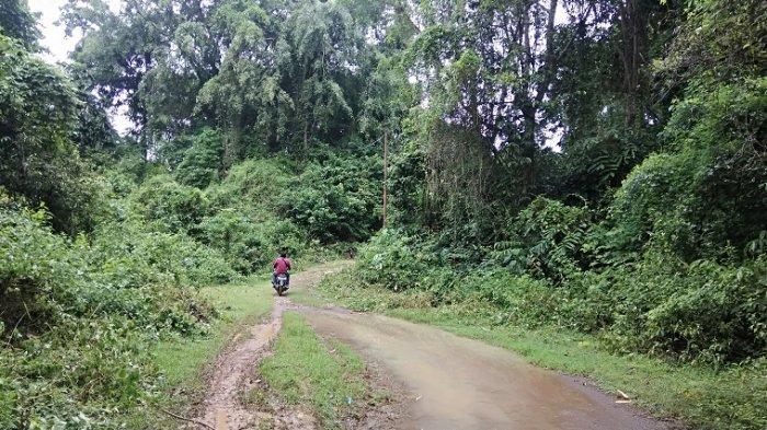 Jalan Menuju Tempat Wisata Bukit Cempalagi Perlu Pembenahan
