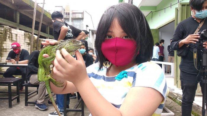KPMH Maros Gelar Kontes Reptil