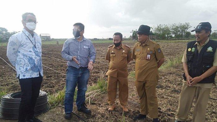 KPK Kawal Proyek Drip Irigasi di Kecamatan Marbo Takalar