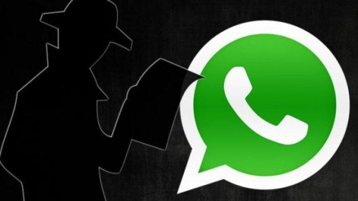 Chat Panjang di WhatsApp Bikin Aplikasi Crash, Gini Cara Mudah Mengatasinya