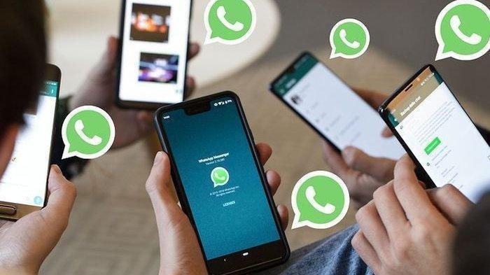 Cara Matikan Fitur Download Otomatis Foto dan Video di WhatsApp, Memori Tak Cepat Penuh
