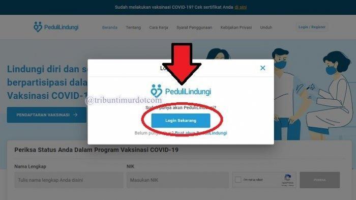 LOGIN pedulilindungi.id untuk Download Sertifikat Vaksin Covid-19, Cukup Pakai No.HP atau Email