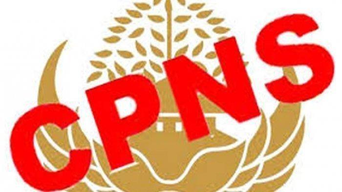 LOGIN sscasn.bkn.go.id mulai 11 November, Segini Nilai yang Harus Dicapai agar Lolos Tes CPNS 2019