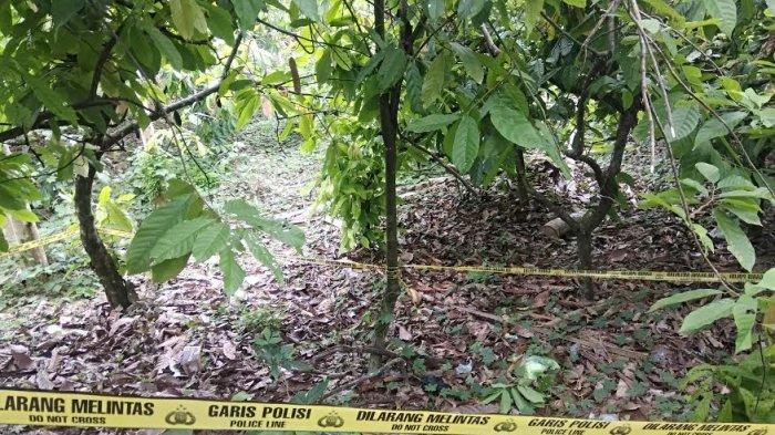 Kronologi Penemuan Mayat Bayi Dalam Kresek di Desa Passippo Bone, Tak Jauh dari Pabrik Batu