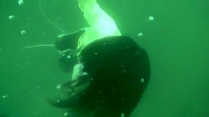 Mayat Putri Tenggelam di Kedalaman 18 Meter Danau Toba, Padahal Awalnya Bareng Teman Perkemahan