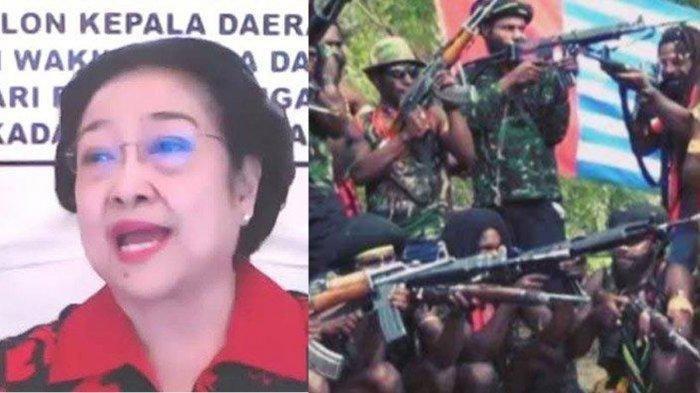 Megawati Turun Tangan Urus KKB Papua, Strategi Perang Lawan Teroris Sudah Disampaikan ke BIN