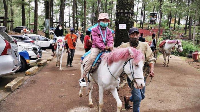 FOTO: Taman Wisata Alam Malino Gowa Terapkan Protokol Kesehatan yang Ketat