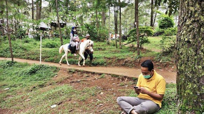 Pengunjung dengan menggunakan masker menikmati sensasi berkuda mengelilingi Taman Wisata Alam Malino Gowa, Senin (28122020). Cukup membayar Rp 20 ribu, pengunjung Taman Wisata Alam Malino bisa berkuda sepuasnya mengelilingi hutan yang dipenuhi pohon pinus ini. tribun timurmuhammad abdiwan